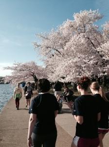 Sakura w Peeps